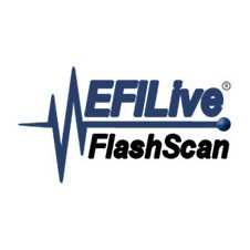 EFILive Flash Scan