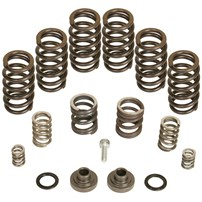BD Diesel Mechanical Governor Spring Kit (4000 RPM) 94-98 Dodge Cummins w/P7100 Pump - 1040185