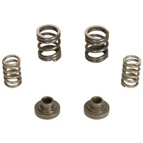 BD Diesel Mechanical Governor Spring Kit (3000 RPM) 94-98 Dodge Cummins w/P7100 Pump - 1040187