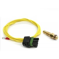 Edge EAS Temperature SENSOR -40F to 300F 1/8